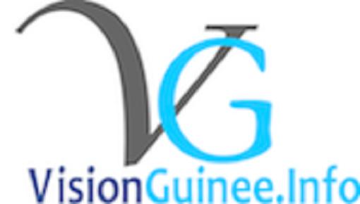 Le logo de Visionguinee