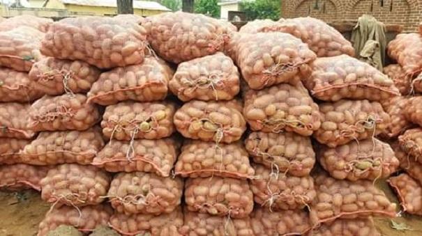 Des sacs de pommes de terre