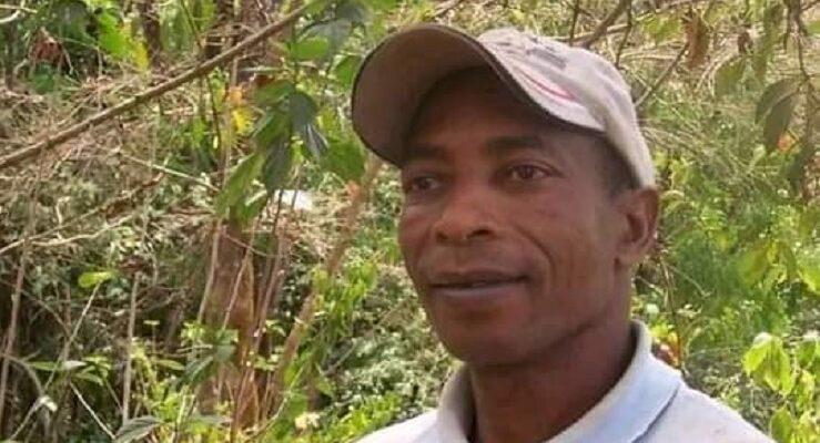 Depuis son décès il y a 13 mois, le jardin du botaniste Alpha Baldé est à l'abandon